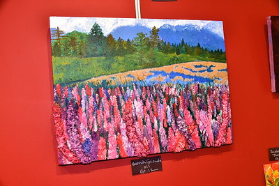 LTS Art At SVAC photos by Gary Baker