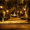 Forsyth Park, Savannah, GA at night