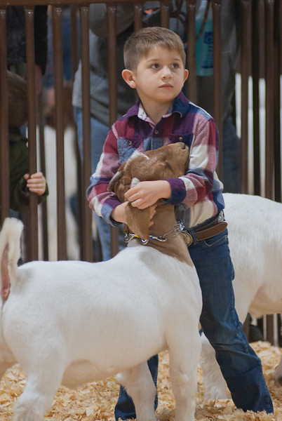 kay_county_showdown_goats_20191207-4.jpg