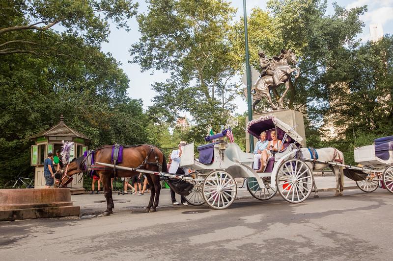 Central Park Wedding - Beth & Nancy-168.jpg