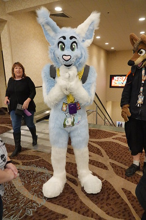 Biggest Little Furry Convention (2019)