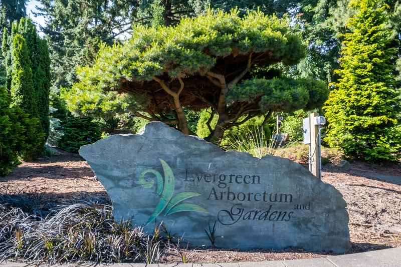 Evergreen Arboretum in Everett, WA