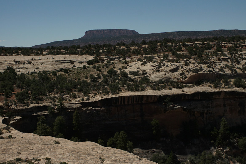 Natural Bridges National Park