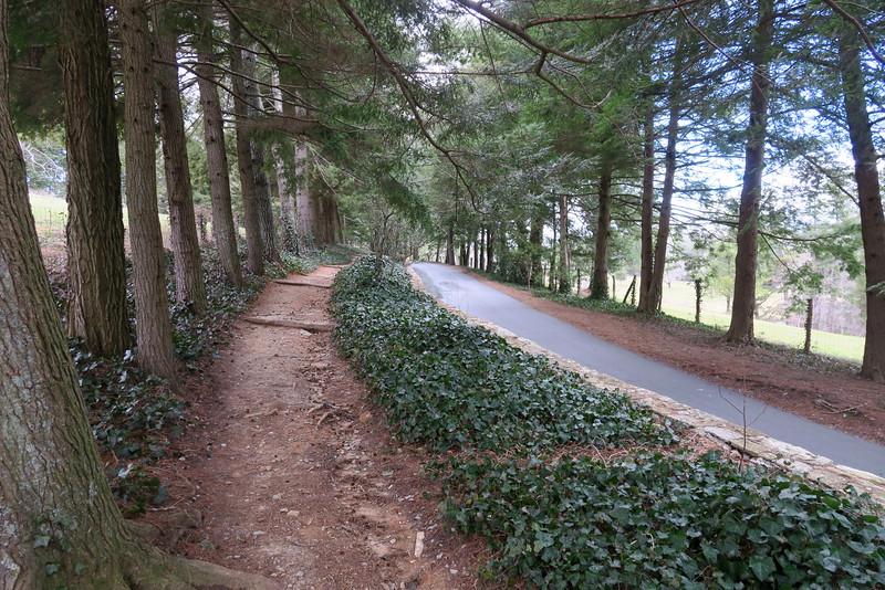 Entrance Trail