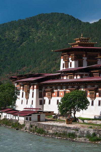 Bhutan-Punakha-8269.jpg