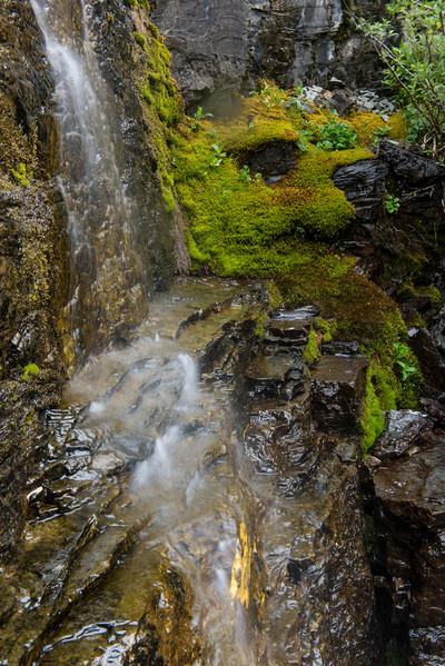 20150712 Glacier NP and Waterton 035.jpg