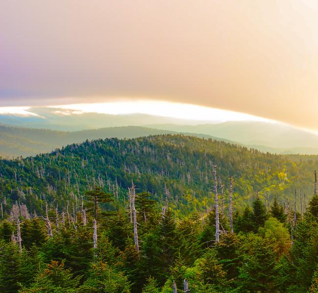 Smoky Mountains 115