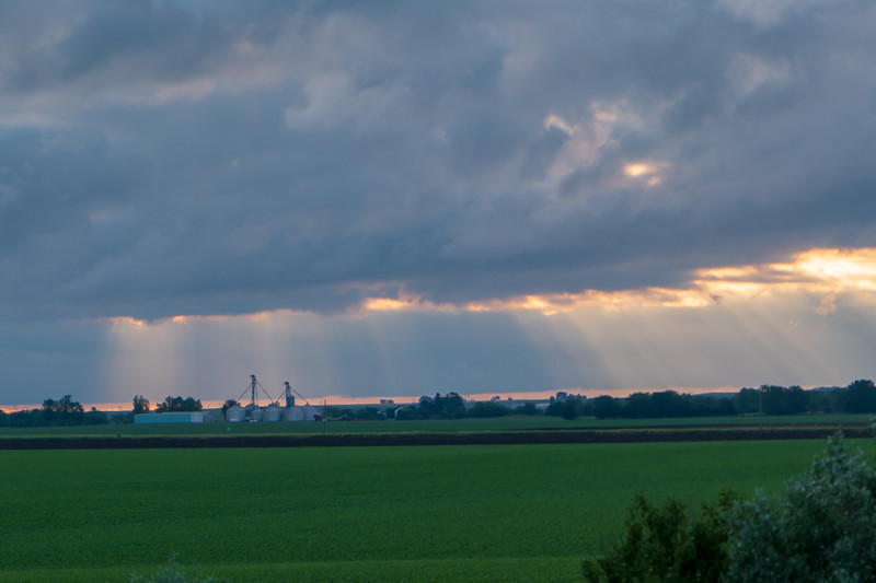 Illinois Farmland Morning