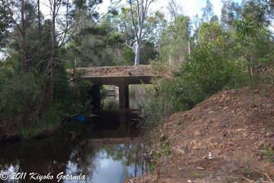 Pillar Valley Creek Trib