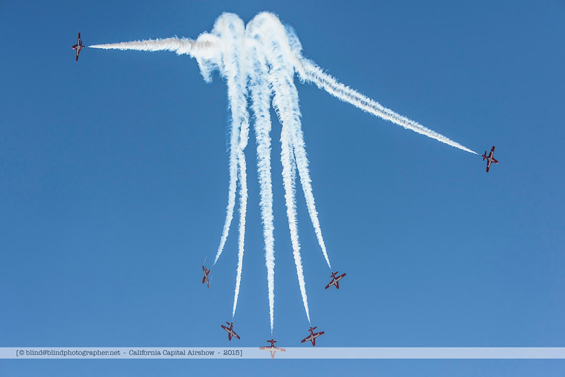 F20151002a115904_3019-Tutor-Snowbirds.jpg