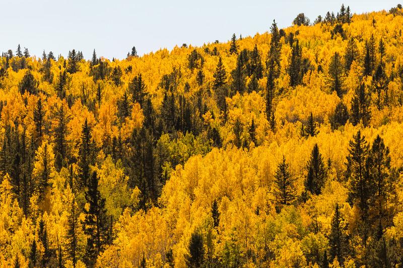 Colorado19_5D4-1136.jpg