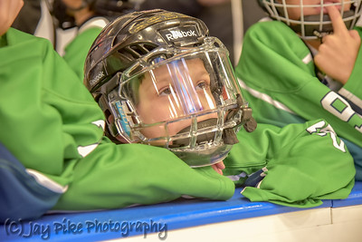 01 - Youth Hockey Teams