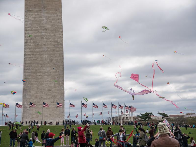 Blossom Kite Festival (2017)-37.jpg