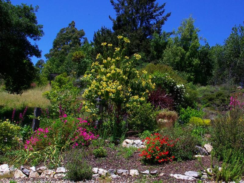 fragrence-garden_3995937785_o.jpg