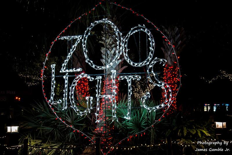 Houston-Zoo-Lights-2841.jpg