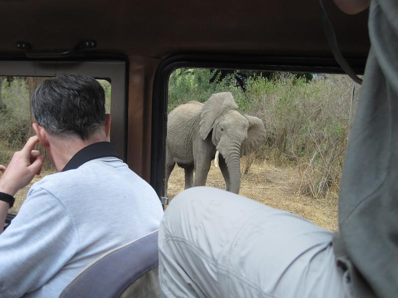 Tanzania14-3282.jpg