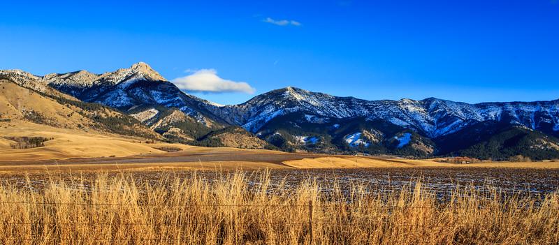 Bridger Mountain Range. 5614