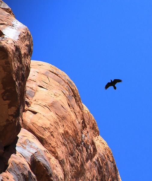 2012 Desert Trip - DAY 5 (112).JPG