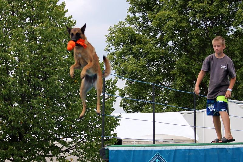 Dock Dogs at Fair-090.JPG