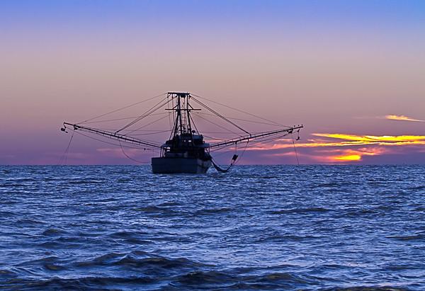 Chasing Shrimpboats