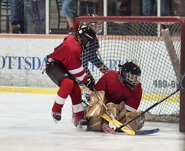 All Phoenix Turkey Shoot Blues Vs Red Wings 11-27-10