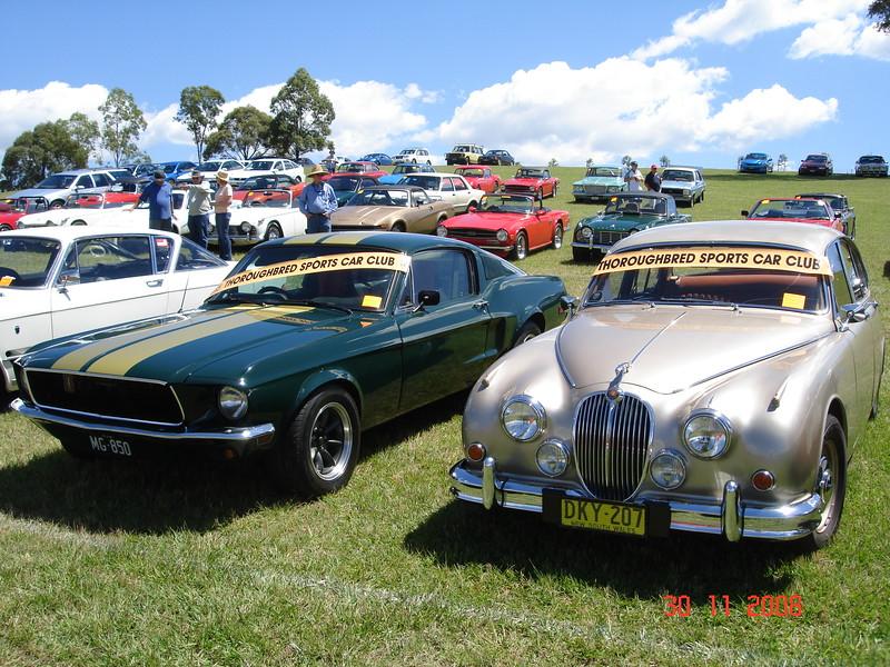 Tasman Revival '08 005.jpg