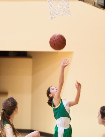 Basketball (Varsity Green) vs. International   Jan. 17, 2014
