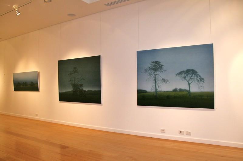 2008 Recent Paintings , Tim Olsen Gallery, Sydney