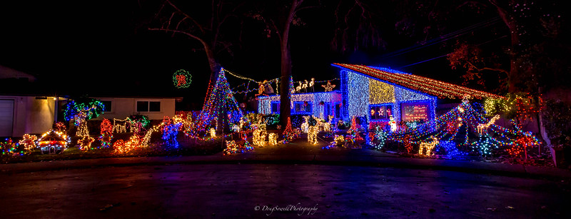 WSac_ChristmasLights-14.jpg