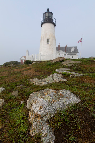 Foggy day along the Maine coast