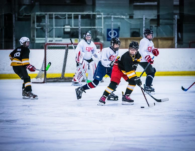 Bruins2-143.jpg