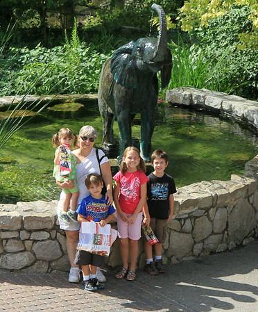 St. Louis Zoo July 2014