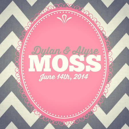 Moss Wedding Photobooth   2014