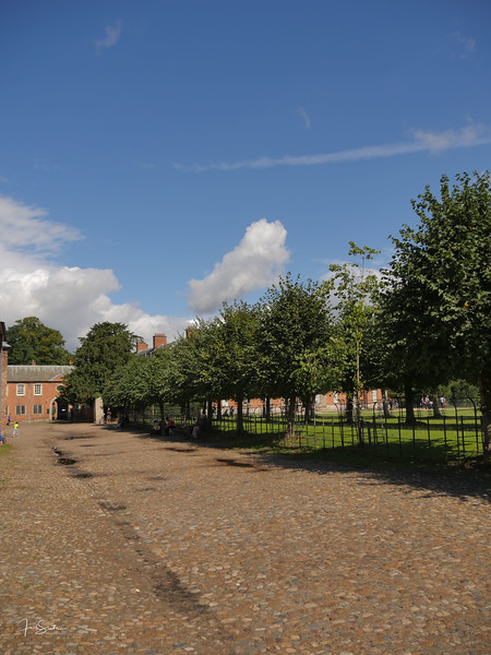 Dunham Massey September 18-38.jpg