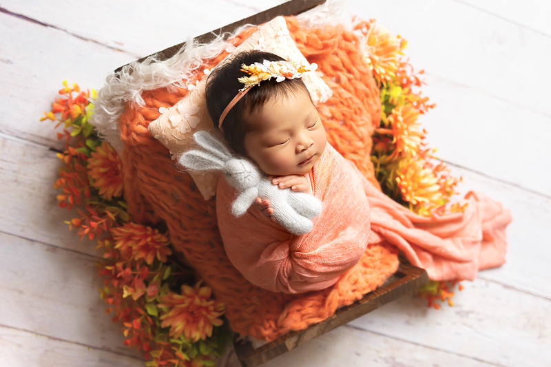Beatrice Isabelle | 17 days