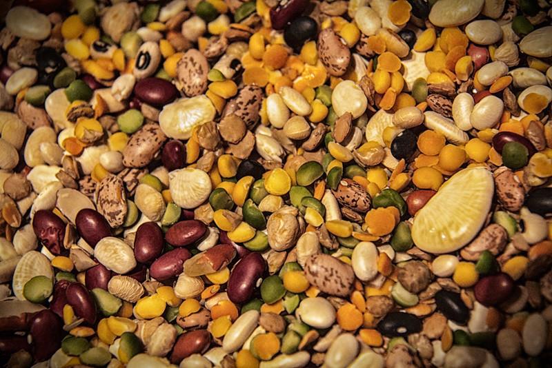 20100109_beans_9929-Edit.jpg