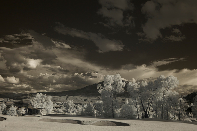 Infra Red back yard 4