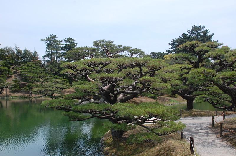 10-Japan2011_0421.JPG