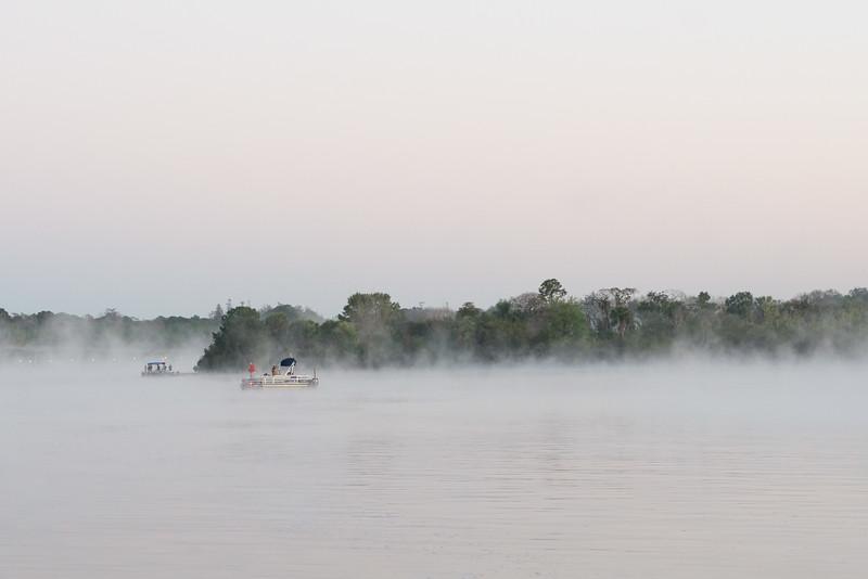 Misty Morning - Magic Kingdom Walt Disney World