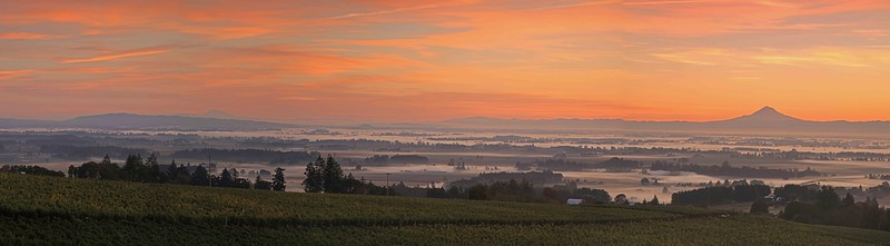Sunrise panoramic from Brooks Winery