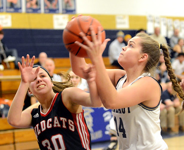 Grand Valley at St. John girls basketball 1-28-19