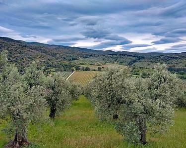 Tuscany VBT 2019