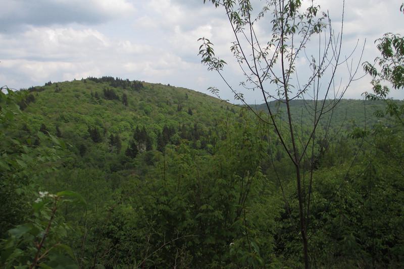 Mountains-to-Sea Trail (5,520')