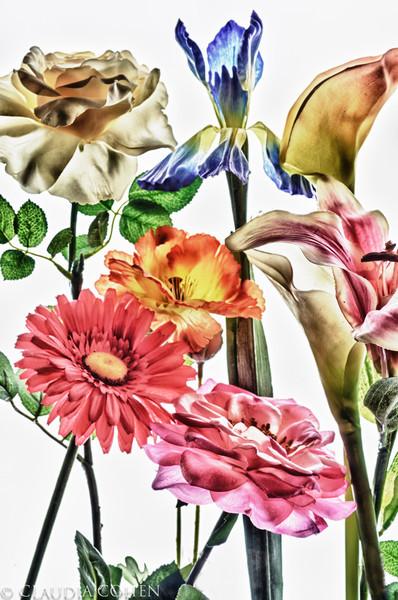 coolflowers.jpg