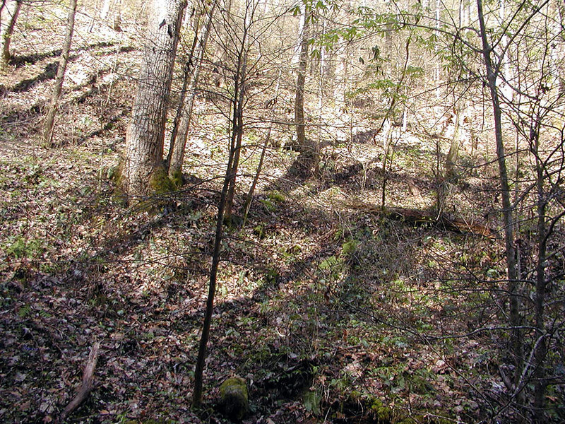 I am standing at creek level at the base of the waterfall looking up and to my right.
