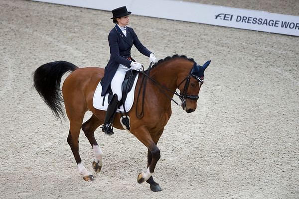 FEI WORLD CUP DRESSAGE 2 (freestyle)