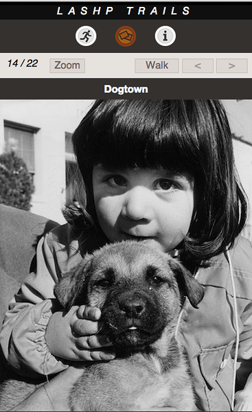 DOGTOWN 14 A.png