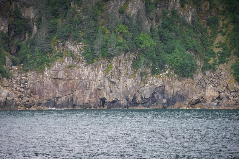 Kenai-Fjords-156.jpg