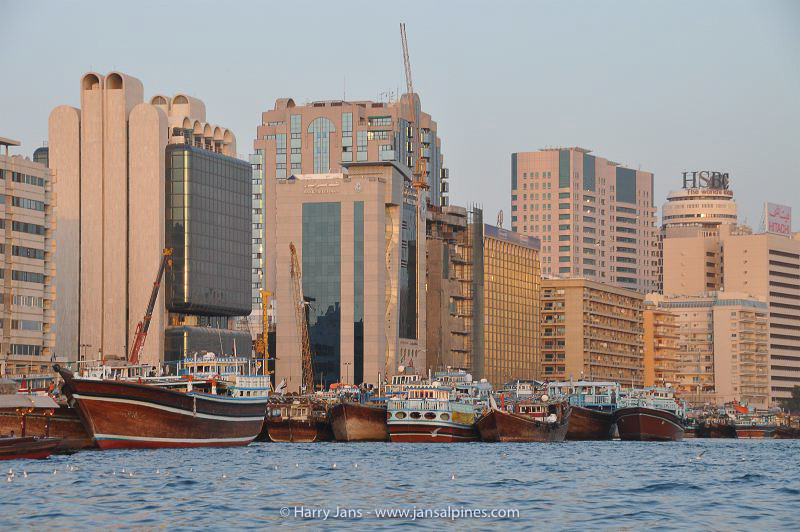 """old & new"", dubai"