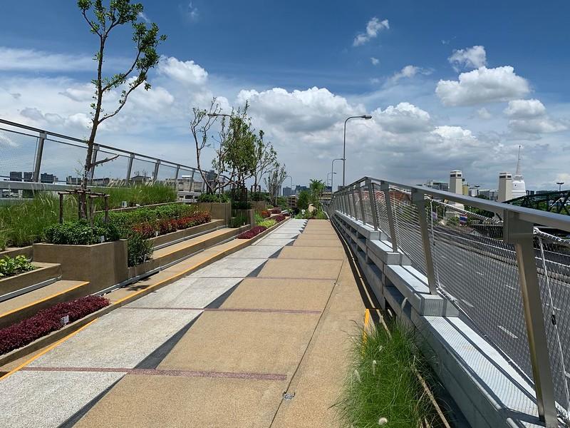 Young trees on Chao Phraya Sky Park